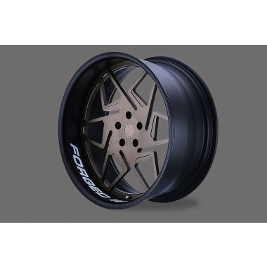 D2 FORGED HS-13
